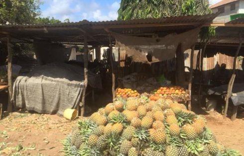 Ananas Malindi
